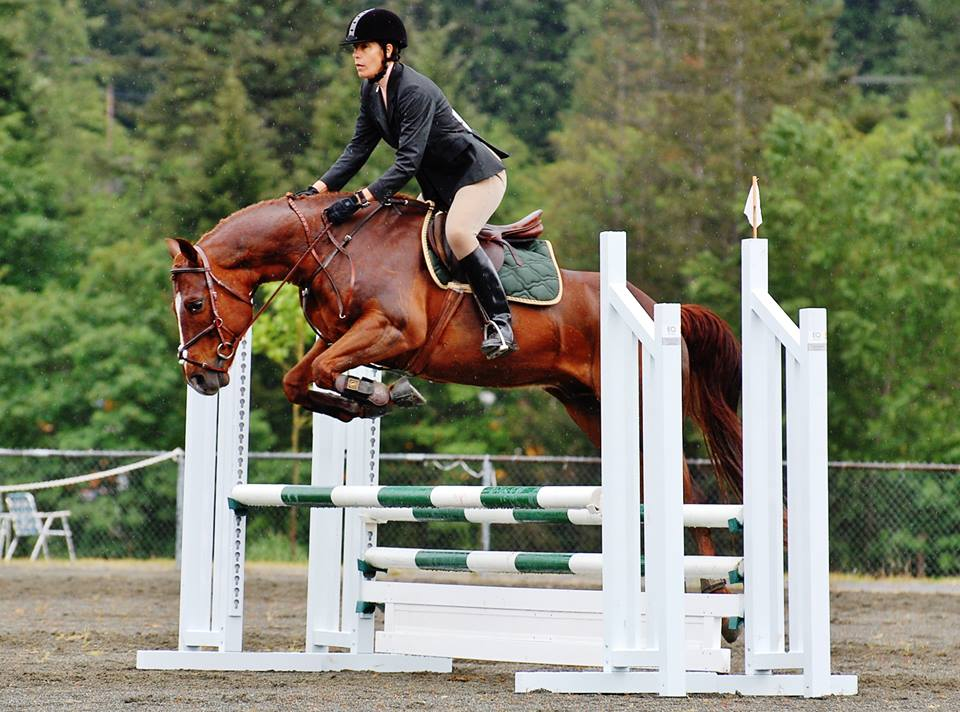 Western horses can jump too