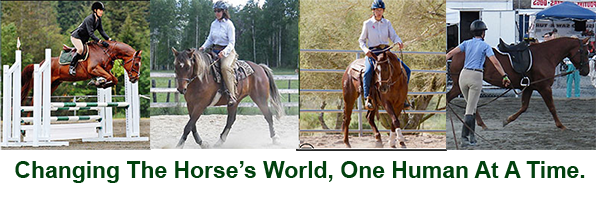 Trish Hyatt – Equine Language Specialist